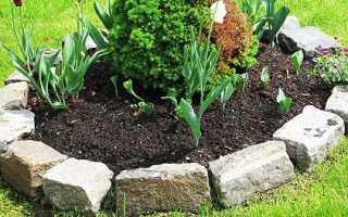 Как сделать бордюры для грядок, клумб и цветников своими руками
