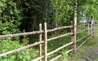 Легкий сквозной забор (изгородь) из жердей своими руками