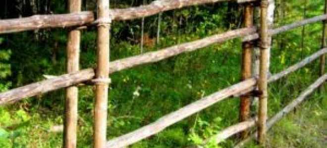Забор из жердей своими руками: фото и видео