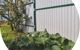 Забор из оцинкованного профнастила — фото, покраска и виды оцинкованного профнастила