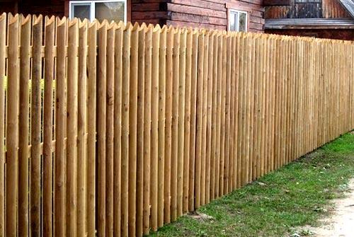 забор из березовых карандашей