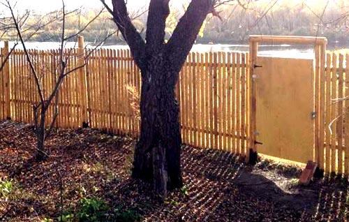 конструкция ограды из березы