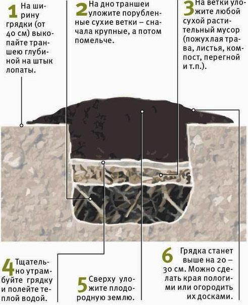 схема компостная грядка