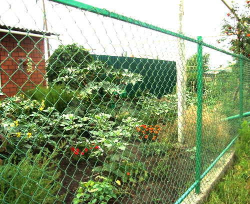 сетка рабица забор